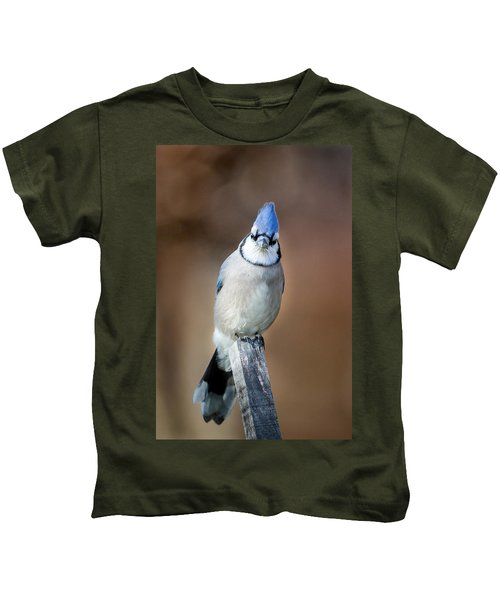 Backyard Birds Blue Jay Kids T-Shirt by Bill Wakeley