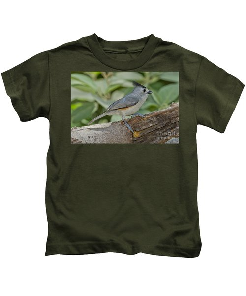 Black-crested Titmouse Kids T-Shirt by Anthony Mercieca