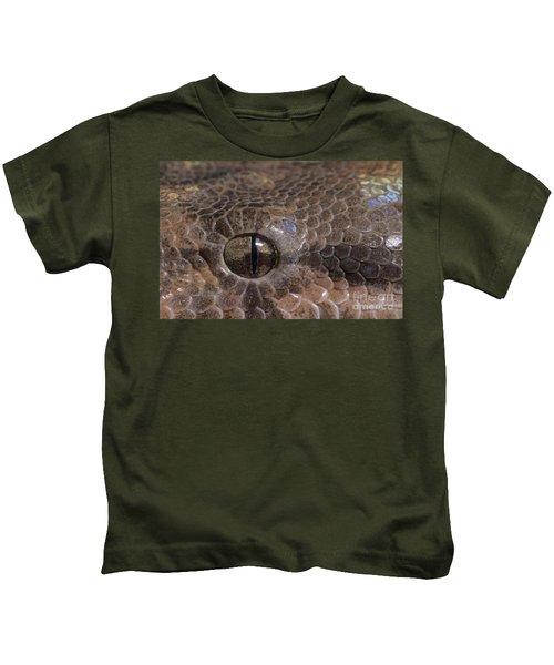 Boa Constrictor Kids T-Shirt by Chris Mattison FLPA