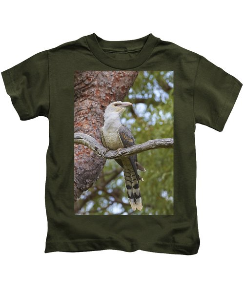 Channel-billed Cuckoo Fledgling Kids T-Shirt by Martin Willis