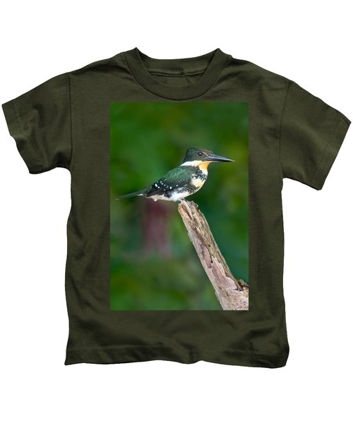 Green Kingfisher Chloroceryle Kids T-Shirt by Panoramic Images