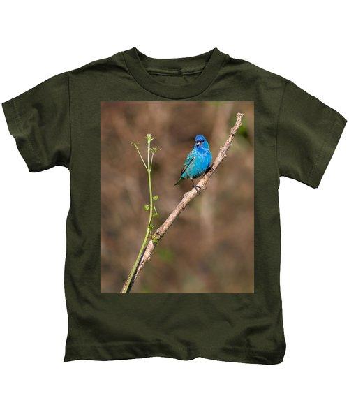 Indigo Bunting Portrait Kids T-Shirt by Bill Wakeley