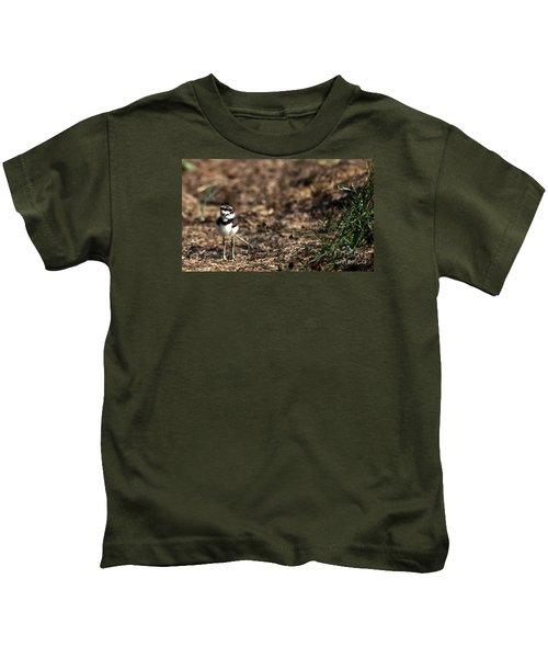 Killdeer Chick Kids T-Shirt by Skip Willits
