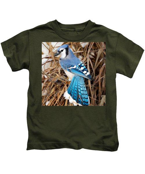 Portrait Of A Blue Jay Square Kids T-Shirt by Bill Wakeley