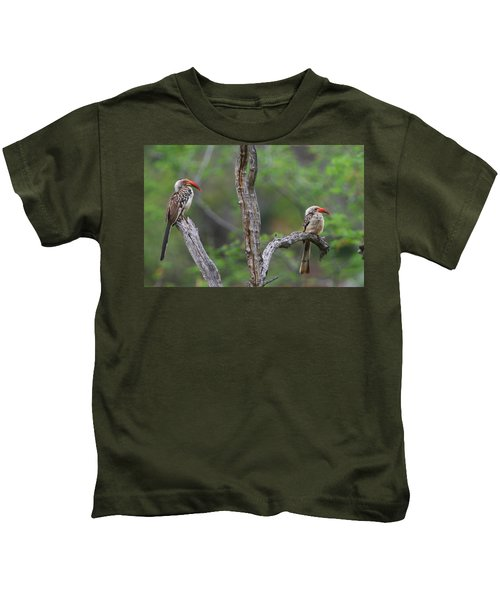 Red-billed Hornbills Kids T-Shirt by Bruce J Robinson