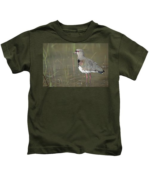 Southern Lapwing In Marshland Pantanal Kids T-Shirt by Tui De Roy