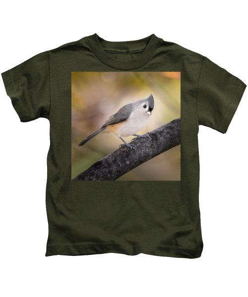 Tufted Titmouse Kids T-Shirt by Bill Wakeley