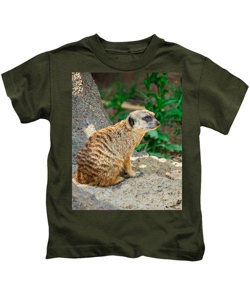 Watchful Meerkat Vertical Kids T-Shirt by Jon Woodhams