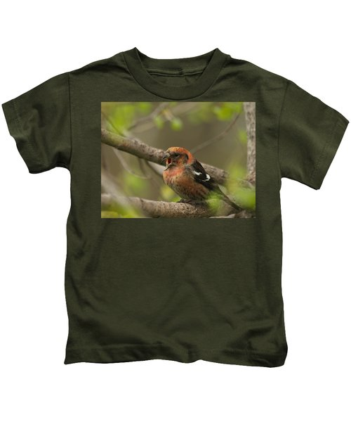 White-winged Crossbill Kids T-Shirt by James Peterson