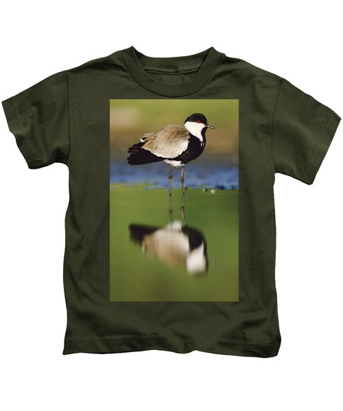 Spur Winged Plover With Its Reflection Kids T-Shirt by Tim Fitzharris