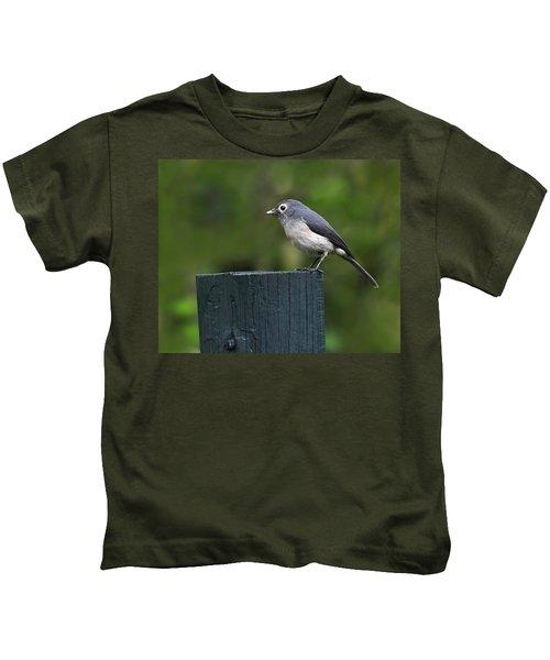 White-eyed Slaty Flycatcher Kids T-Shirt by Tony Beck