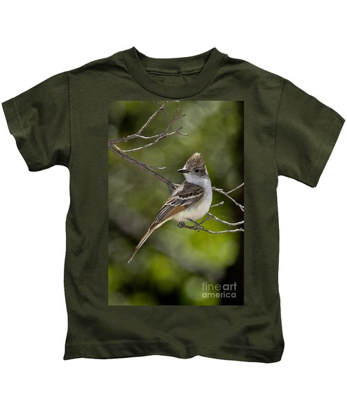 Ash-throated Flycatcher Kids T-Shirt by Anthony Mercieca