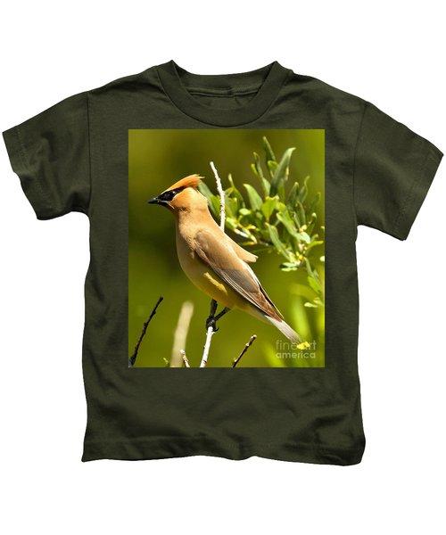 Cedar Waxwing Closeup Kids T-Shirt by Adam Jewell