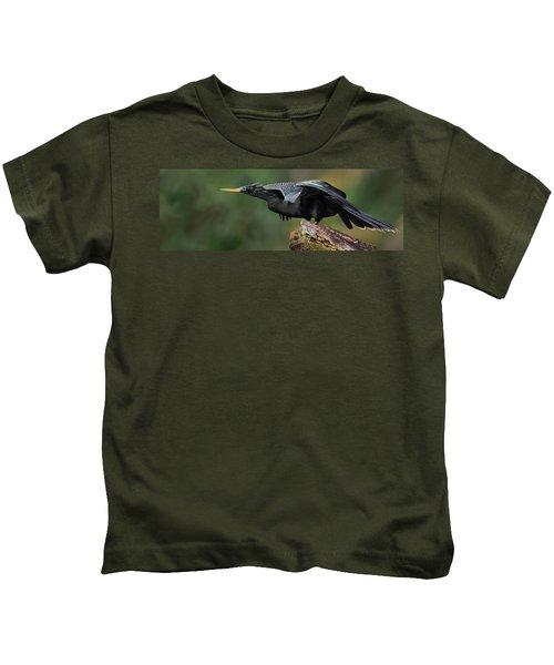 Anhinga Anhinga Anhinga, Costa Rica Kids T-Shirt by Panoramic Images