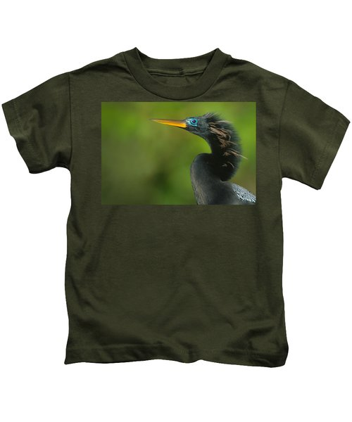 Anhinga Anhinga Anhinga, Tortuguero Kids T-Shirt by Panoramic Images
