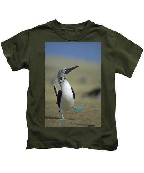 Blue-footed Booby Sula Nebouxii Kids T-Shirt by Tui De Roy