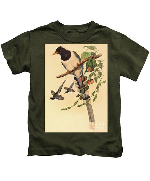 Blue Magpie, Urocissa Magnirostris Kids T-Shirt by John Gould