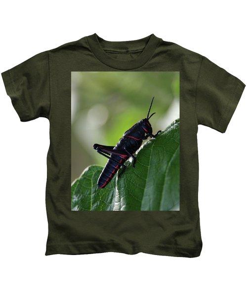 Eastern Lubber Grasshopper Kids T-Shirt by Richard Rizzo