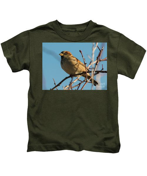 Female House Sparrow Kids T-Shirt by Mike Dawson