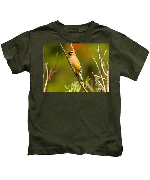 Glacier Cedar Waxwing Kids T-Shirt by Adam Jewell