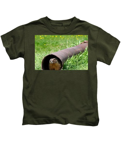Groundhog In A Pipe Kids T-Shirt by Will Borden