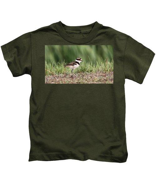 Killdeer - 24 Hours Old Kids T-Shirt by Travis Truelove