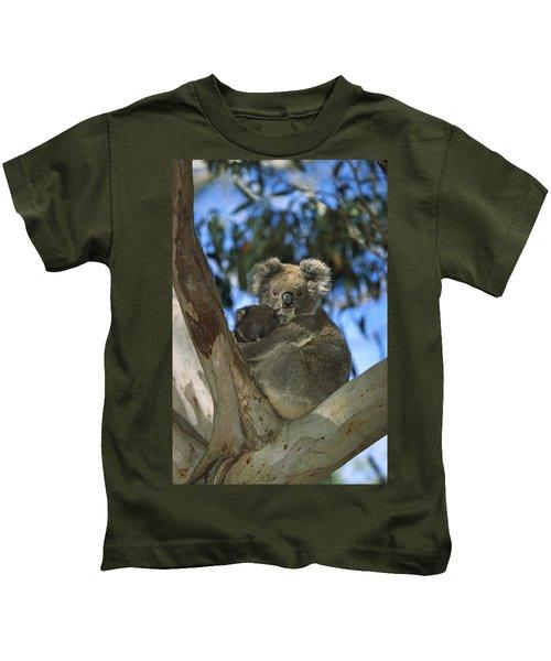 Koala Phascolarctos Cinereus Mother Kids T-Shirt by Konrad Wothe