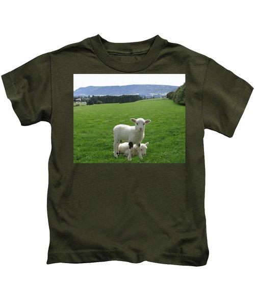 Lambs In Pasture Kids T-Shirt by Dominic Yannarella