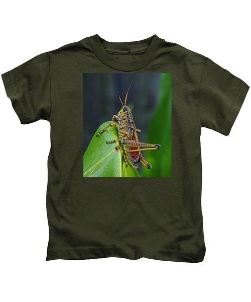 Lubber Grasshopper Kids T-Shirt by Richard Rizzo