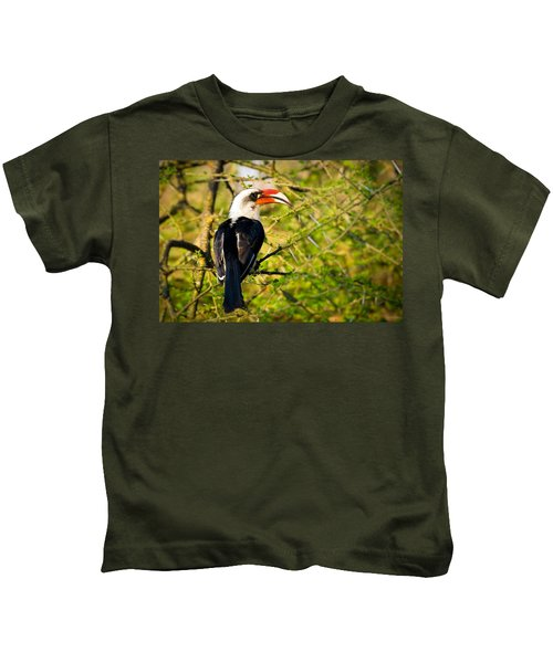 Male Von Der Decken's Hornbill Kids T-Shirt by Adam Romanowicz