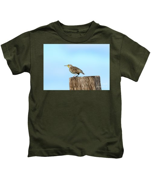 Meadowlark Roost Kids T-Shirt by Mike Dawson