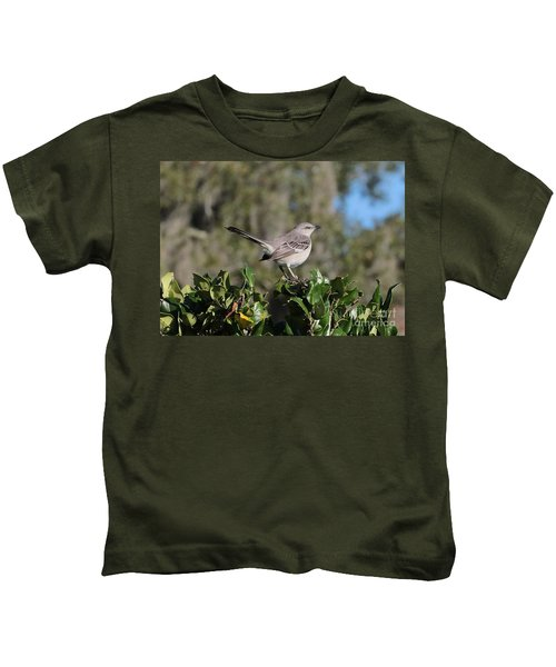 Northern Mockingbird Kids T-Shirt by Carol Groenen