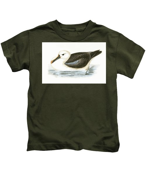 Yellow Nosed Albatross Kids T-Shirt by English School