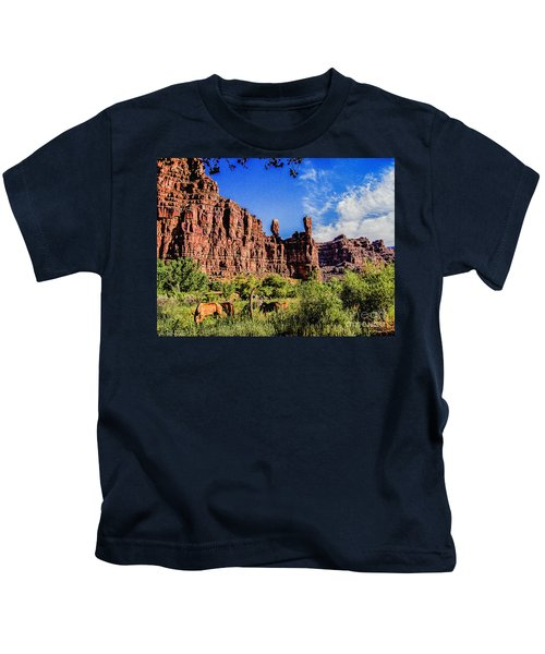 Private Home Canyon Dechelly Kids T-Shirt by Bob and Nadine Johnston