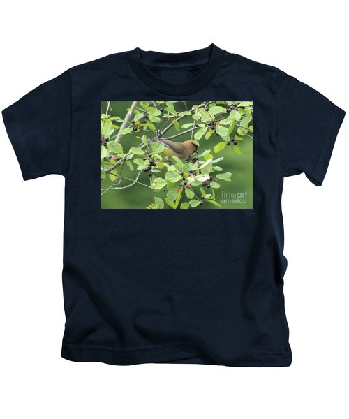 Cedar Waxwing Eating Berries Kids T-Shirt by Maili Page