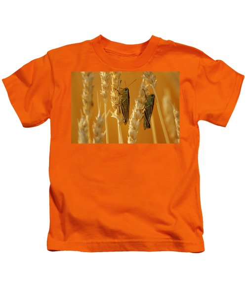 Grasshoppers On Wheat, Treherne Kids T-Shirt by Mike Grandmailson