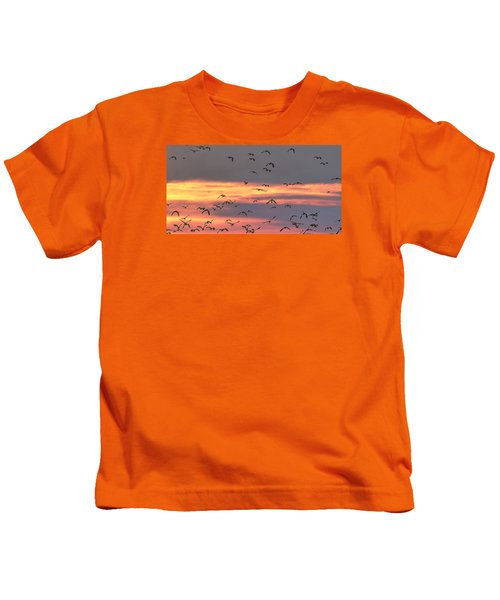 Lapwings At Sunset Kids T-Shirt by Jeff Townsend
