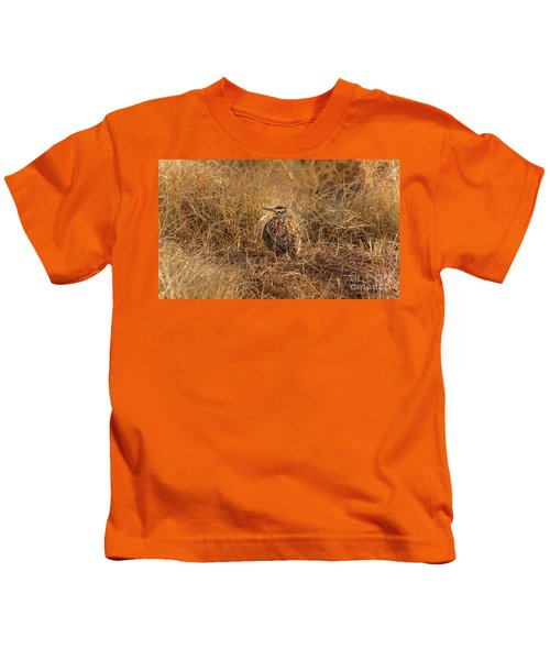 Meadowlark Hiding In Grass Kids T-Shirt by Robert Frederick