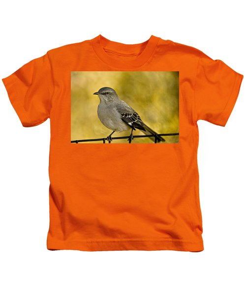 Northern Mockingbird Kids T-Shirt by Chris Lord