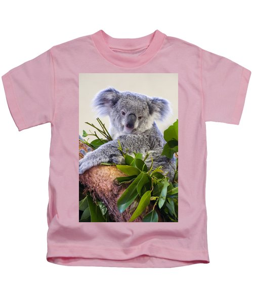 Koala On Top Of A Tree Kids T-Shirt by Chris Flees