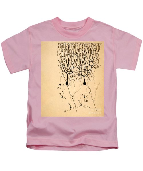 Purkinje Cells By Cajal 1899 Kids T-Shirt by Science Source