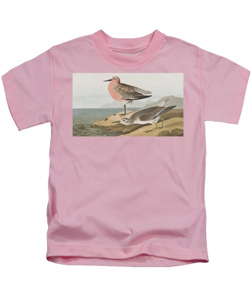Red-breasted Sandpiper  Kids T-Shirt by John James Audubon