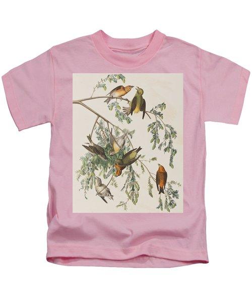 American Crossbill Kids T-Shirt by John James Audubon