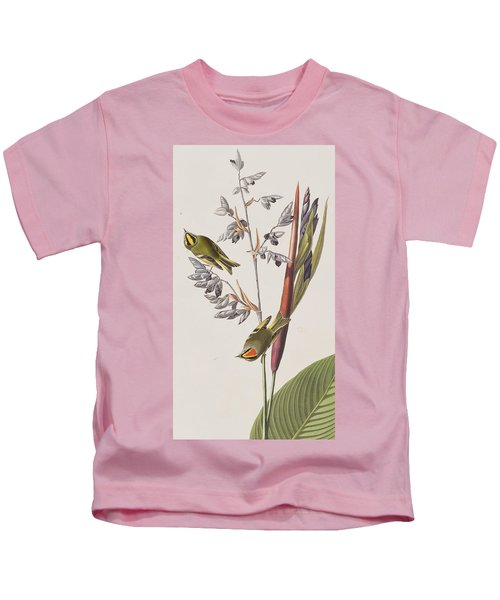 Golden-crested Wren Kids T-Shirt by John James Audubon