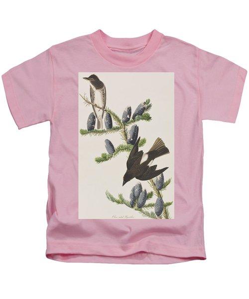 Olive Sided Flycatcher Kids T-Shirt by John James Audubon
