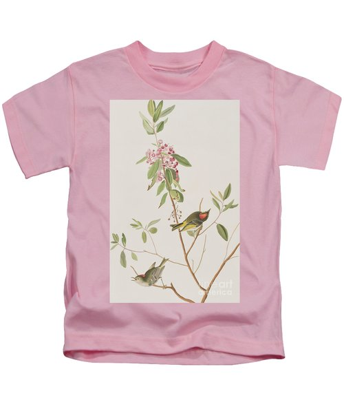 Ruby Crowned Wren Kids T-Shirt by John James Audubon
