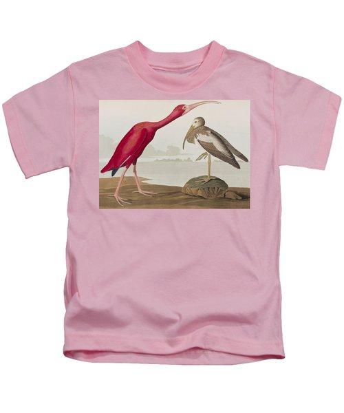 Scarlet Ibis Kids T-Shirt by John James Audubon