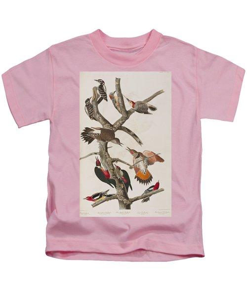 Woodpeckers Kids T-Shirt by John James Audubon