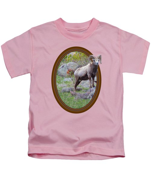 Colorado Bighorn Kids T-Shirt by Shane Bechler