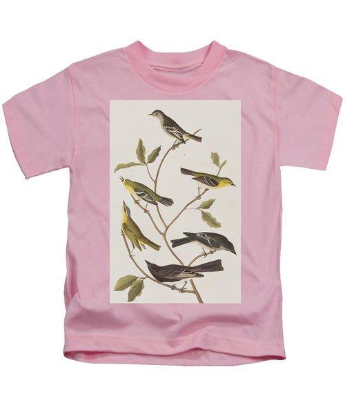 Fly Catchers Kids T-Shirt by John James Audubon